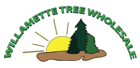Welcome to Willamette Tree Wholesale, Inc.